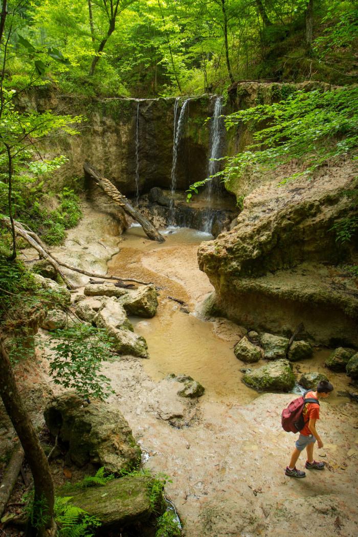 2. Clark Creek Nature Area, Woodville