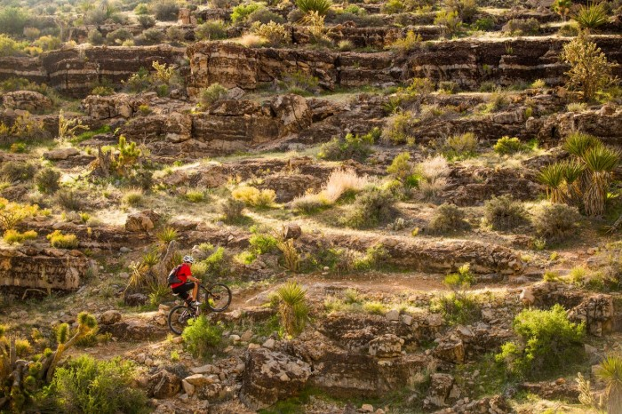6. For mountain bikers and hikers, Nevada truly is heaven on Earth.