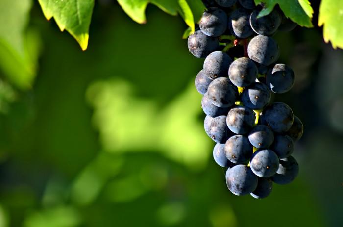 9. Welch's Grape Juice