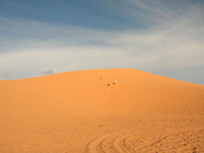 2. Coral Pink Sand Dunes State Park