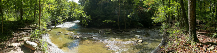 Brandywine Creek: