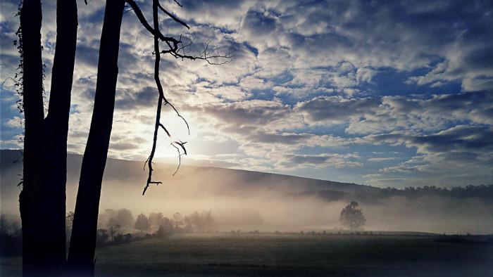13. This foggy field in western Maryland is eerie yet calming.