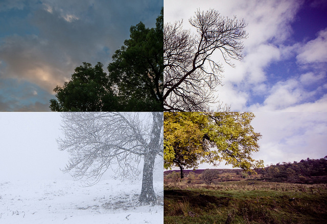 We have all four seasons.