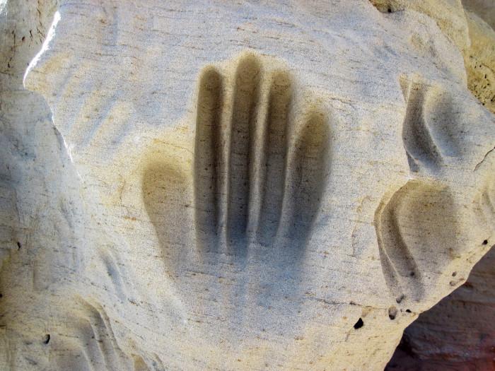 3. White Mountain Petroglyphs