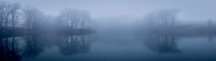 17. You could almost get lost in the mist in this shot at Oak Glen State Wildlife Management Area.