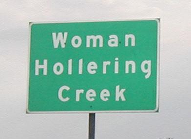 7. Woman Hollering Creek (Seguin)