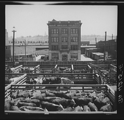 "4. ""Stockyards. Kansas City, Kansas."" (1936)"
