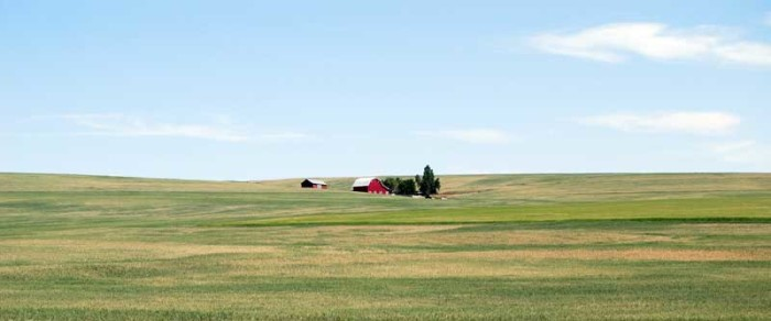 11. A secluded farmhouse on rolling green hills. Look at all that open space...