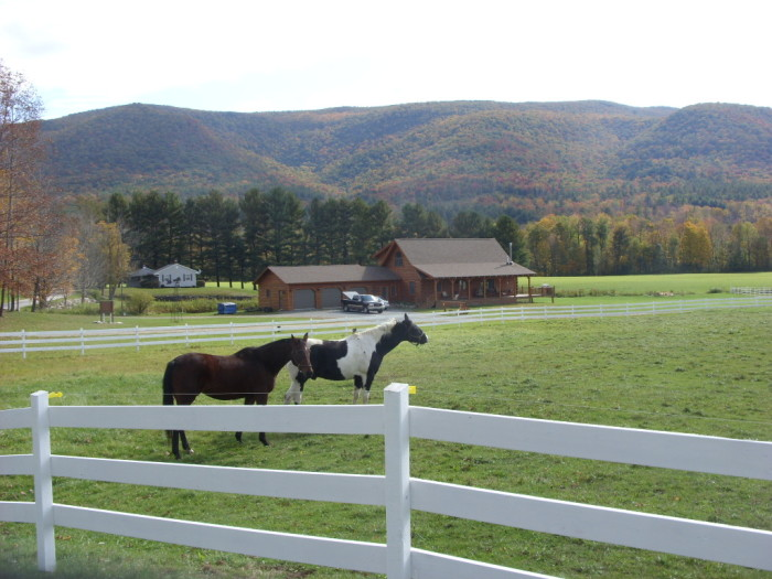 18.  Horses on a farm in Stamford, Vermont.