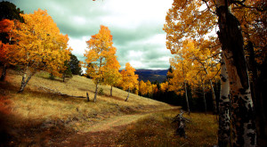 If You Live In Colorado You Must Visit This Amazing State Park