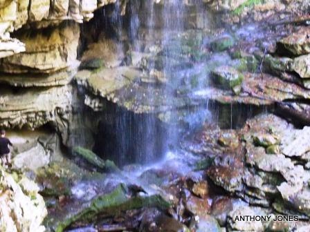 Native Tribes of Shawnee, Cherokee, Creek and Chickasaw once dwelled in the caves at the river's base.