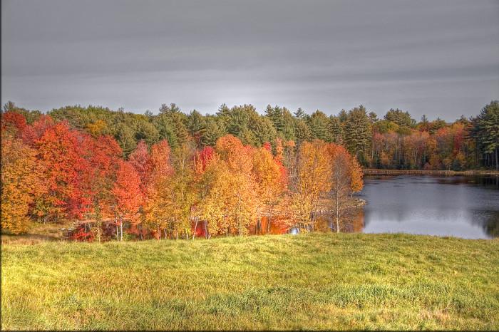 8. The autumn colors