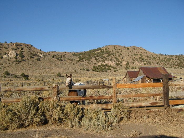 7. The Old Yella Dog Ranch, located in Vya, Nevada.
