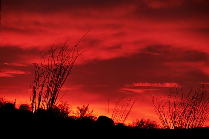 11. A blazing red sky wakes up Anza-Boreggo State Park.