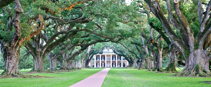 2. Take a stroll down Oak Alley Plantation, Vacherie, LA