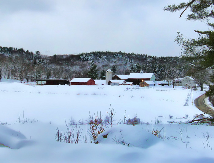 5. All is quiet in this barn after a snow.