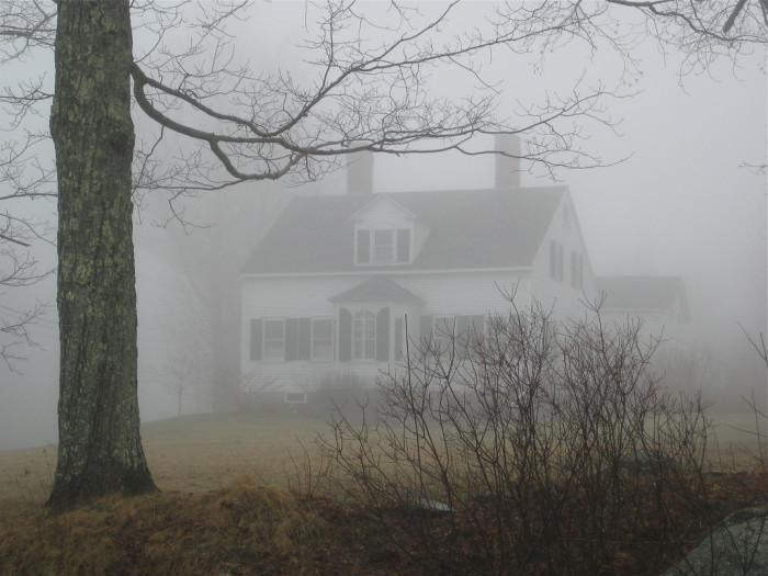 9. A foggy morning in Blue Hill.
