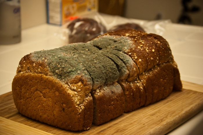 8. Unless you're going to eat it that same day, bread should be stored in the fridge.