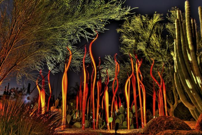 3. Desert Botanical Garden