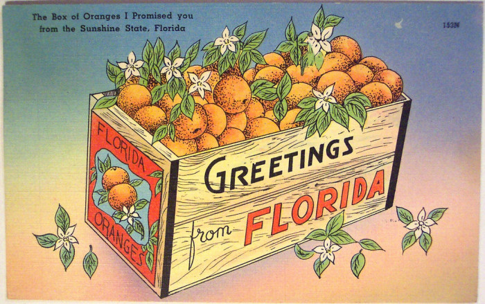 """1. """"The Box of Oranges I Promised You from the Sunshine State, Florida"""""""