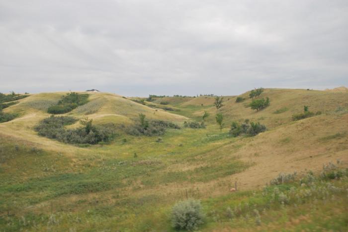 3. Rolling grassy hills near Burlington, ND.