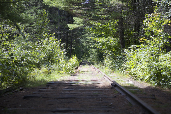 4. Many old railroad tracks in New Hampshire have been converted into trails, but this one has simply been reclaimed by the woods.