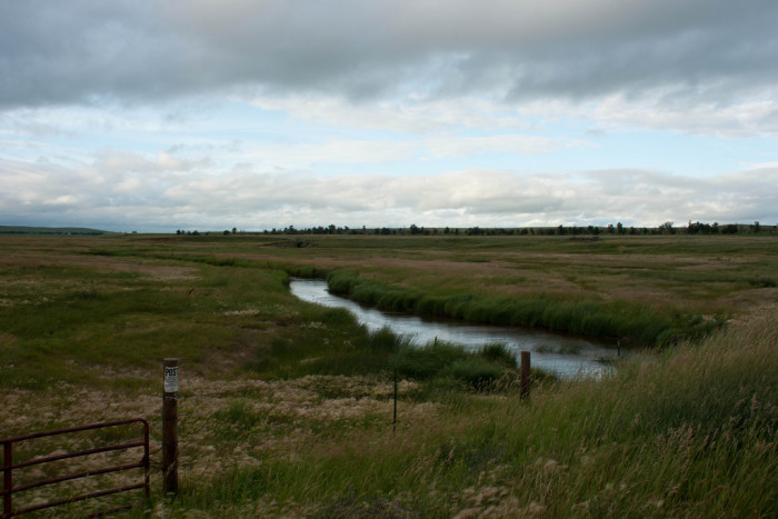 4. This stream snaking through a field near Hirschville, ND