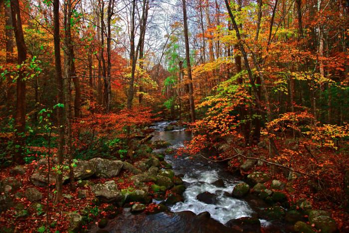 4. Roaring Fork Motor Trail - Gatlinburg