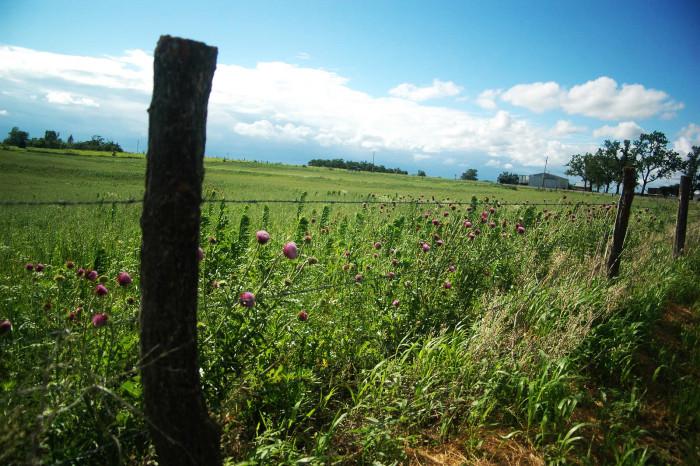 4.Rural Missouri