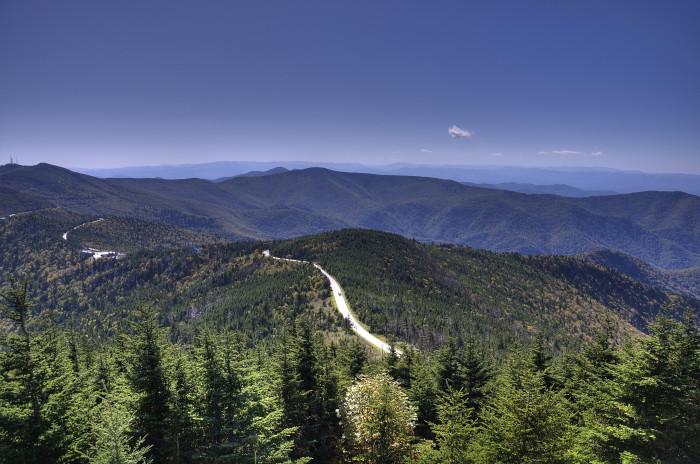6. Standing far above the rest at Mt. Mitchell.