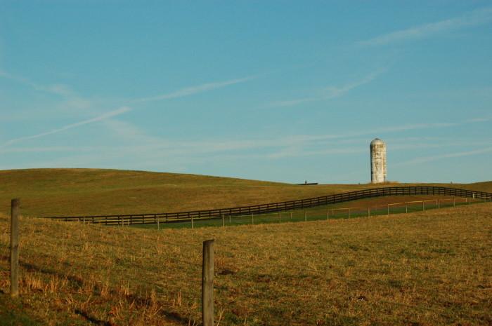 7. An idyllic pasture scene in Warrenton