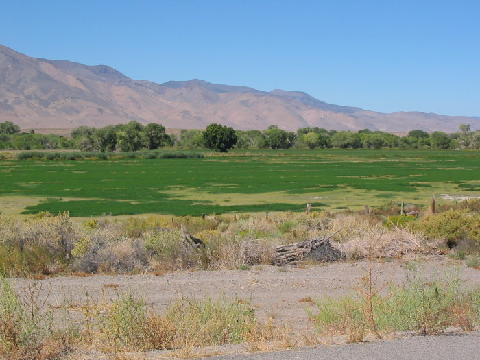 6. Truckee Meadows---land along the Truckee delta on the Pyramid Lake Reservation.