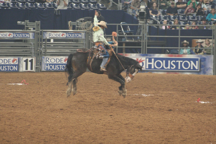 1. It's the world's largest livestock show and rodeo. Yes, the WORLD. That isn't just a Texas-sized exaggeration.
