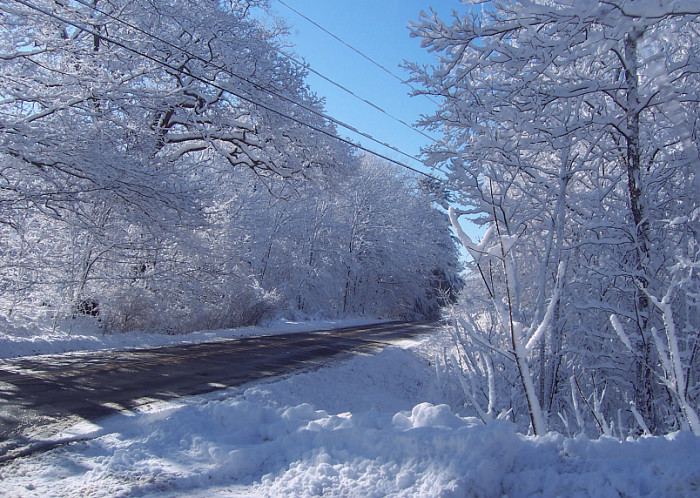3. Snow is even more beautiful when it's untouched off Maine's US1.