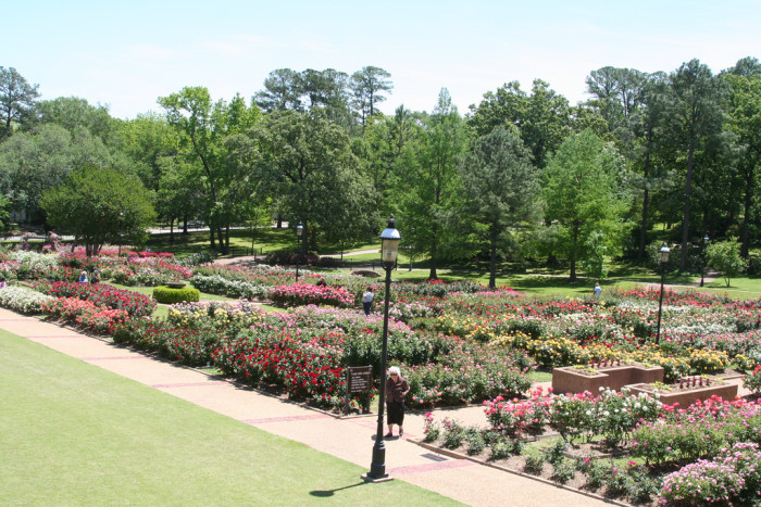 11. Tyler has the nation's largest rose garden at 14 acres.
