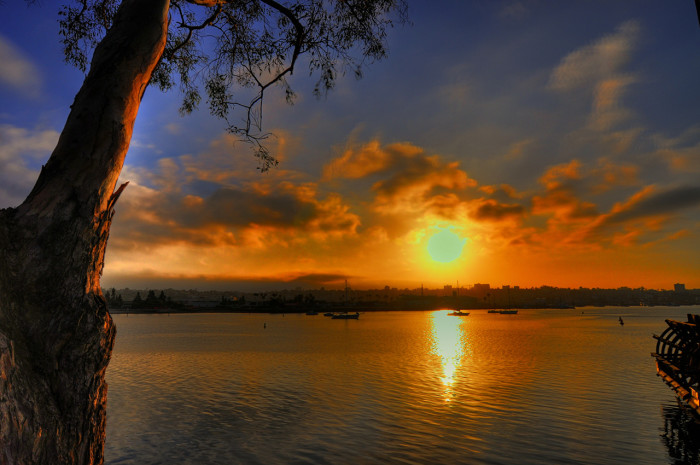 4. A warm honey-colored sky at sunrise in San Diego at Harbor Island. Divine!