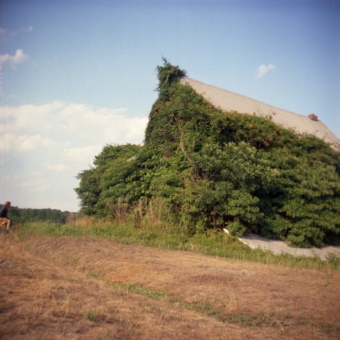 5. ...Or insanely overgrown structures like this farmhouse in Berlin.