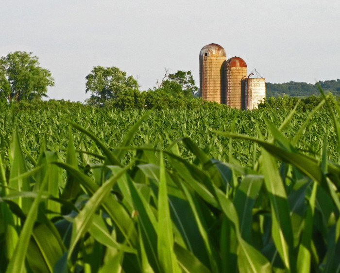 2. Farm in Piketon, OH