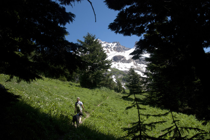 Mount Hood has countless wonderful hiking trails, including the famous Timberline Trail, a 40.7 mile trail that circles the mountain.