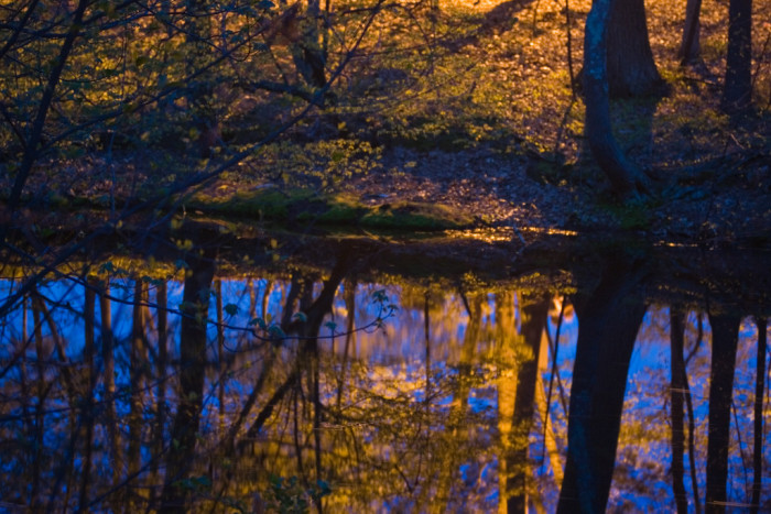 8. Twilight is reflected on a pond in Nashua.