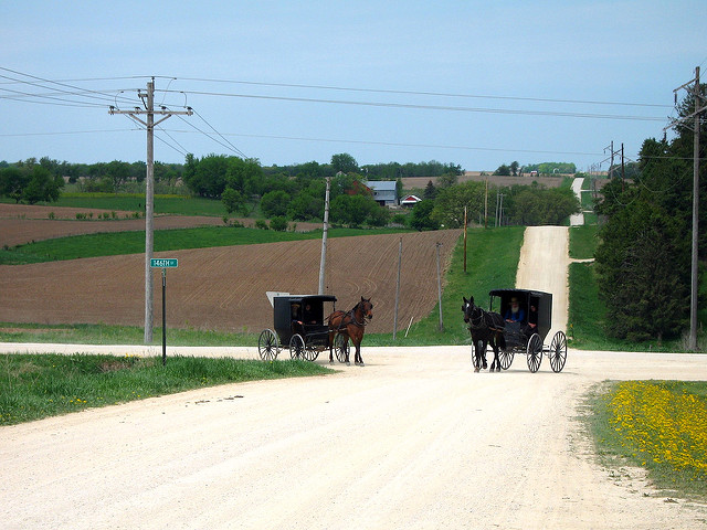7. Ever been stuck behind an Amish buggy in traffic?