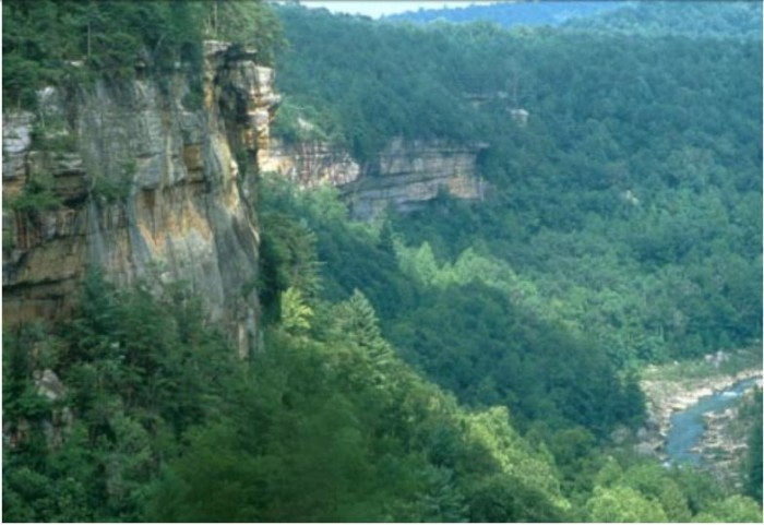 The lands around the Cumberland River are overflowing with wildlife, a flourishing forest and ancient rock formations.