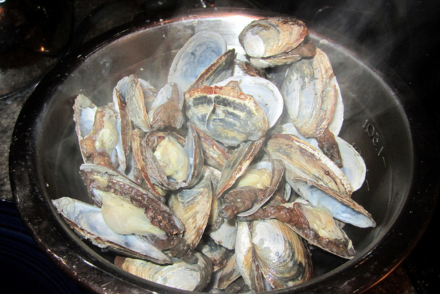 6. Steamers