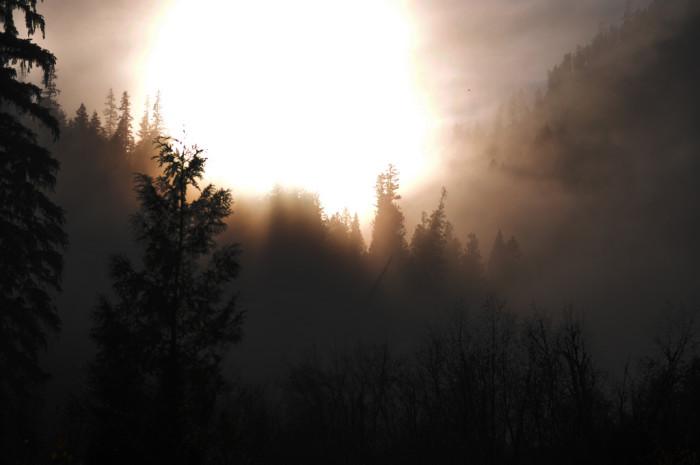 6. The sun bursting through a break in the fog is almost blinding.