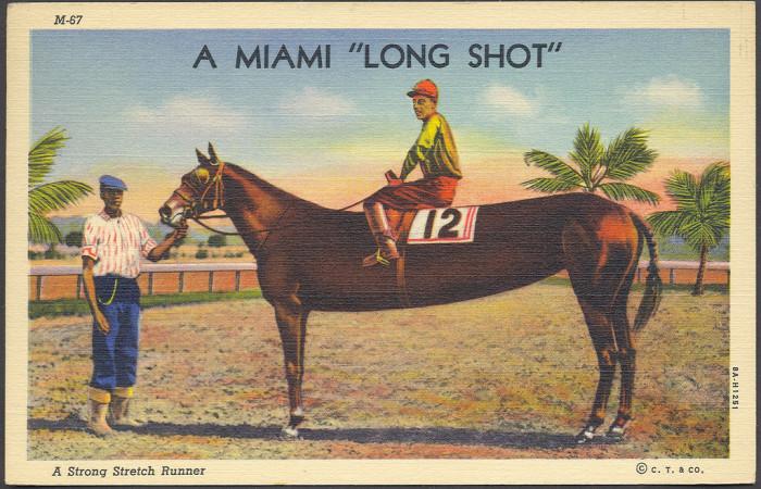 "14. ""A Miami Long Shot: A Strong Stretch Runner"""