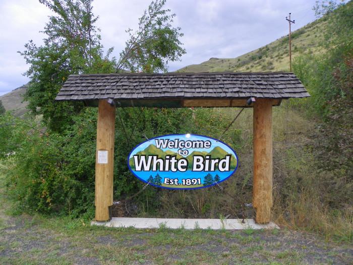 8. White Bird (Pop. 91)