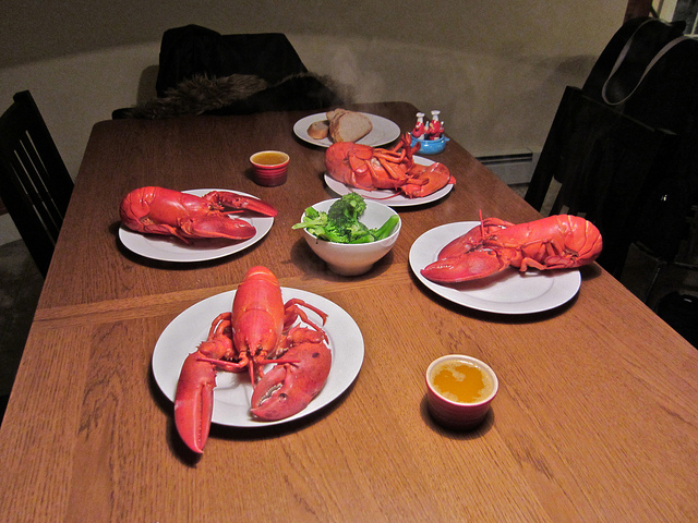 11. Do you get tired of seafood?