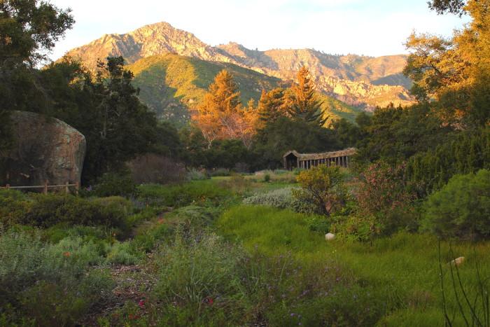 3. Santa Barbara Botanic Garden