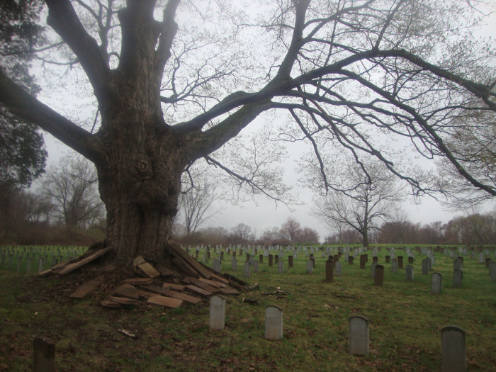 5. Connecticut Valley Hospital Cemetery, Middletown
