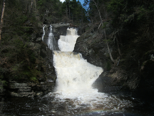 And here they are-- the beautiful Raymondskill Falls.